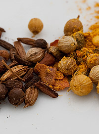 Curry Powder in the TableFare Spice Library