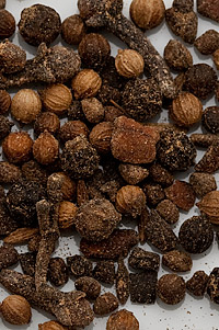 Garam Masala in the TableFare Spice Library